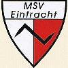 msv_logo
